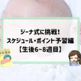 ジーナ式スケジュール予習編6〜8週目