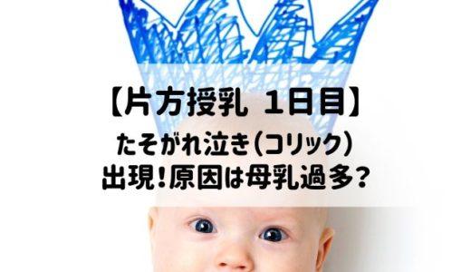 【片方授乳1日目】たそがれ泣き(コリック)の原因は母乳過多?